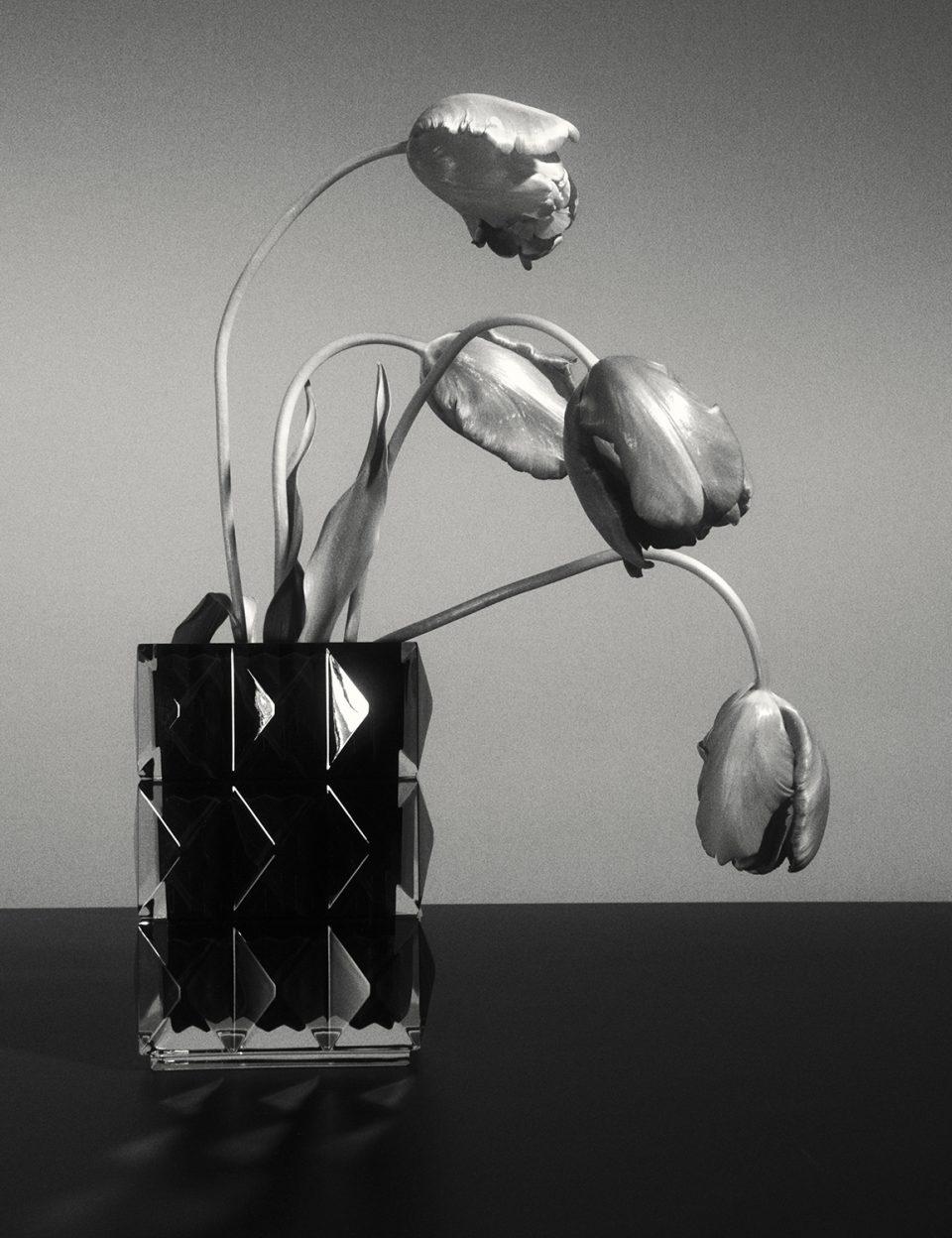 日常を豊かにする、サンローランが手がける美しいライフスタイルプロダクト。